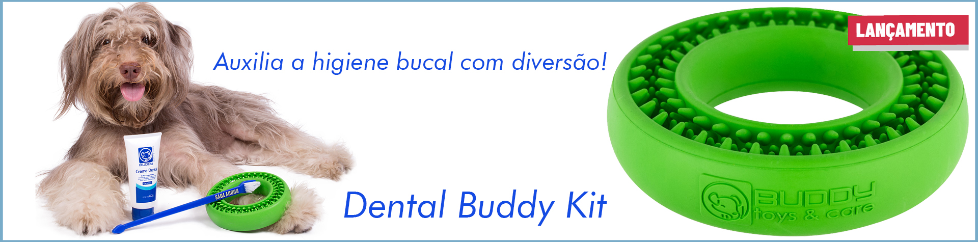 Dental Buddy2